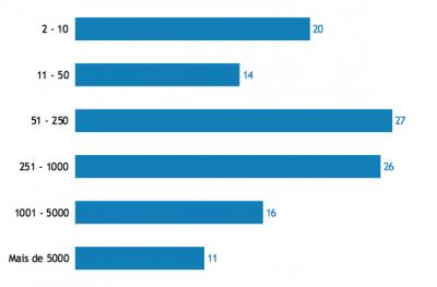 Número de colaboradores nas organizações que participaram no Estudo (PT 2019)